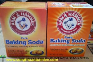 bot-baking-soda-that-gia